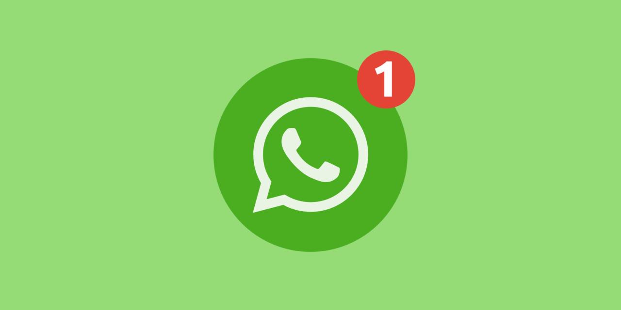 Записаться на прием или получить ответ на интересующий вопрос теперь можно в WhatsApp